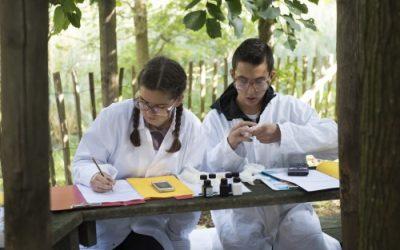 Biotoopstudie 4de jaar