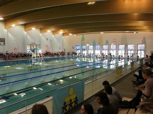 artikel vlaams zwemkampioenschap IMG_6102